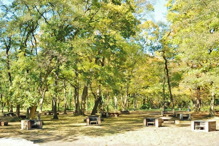 埼玉県 秋ヶ瀬公園 ザリガニ