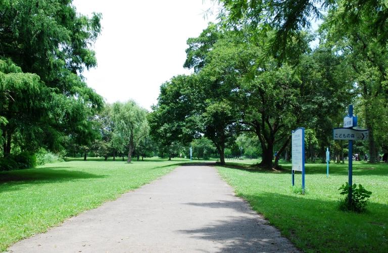 秋ヶ瀬公園 バーべキューケータリング