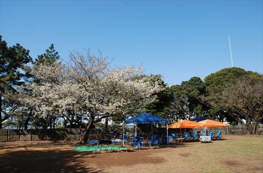 晴海ふ頭公園 BBQレンタル (33)