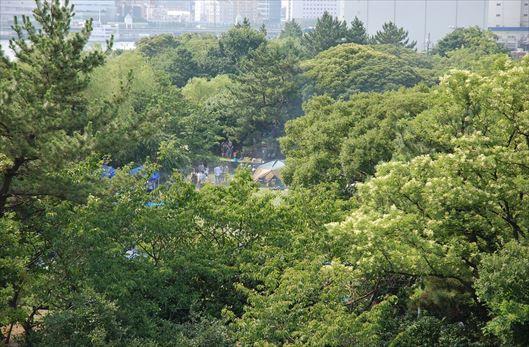晴海ふ頭公園 BBQレンタル (64)