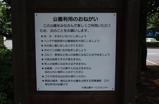木場公園 BBQレンタル